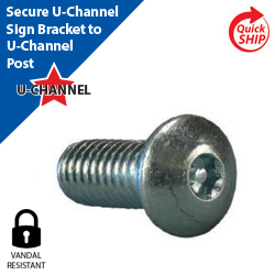 Vandal Resistant Button Head Bolt