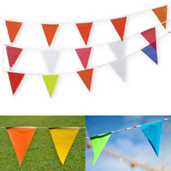 Colored Pennant Flag Strings